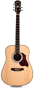 XV_180S - Solid Spruce Top Rosewood back and sides with Binding